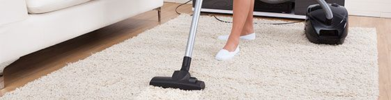 Bayswater Carpet Cleaners Carpet cleaning